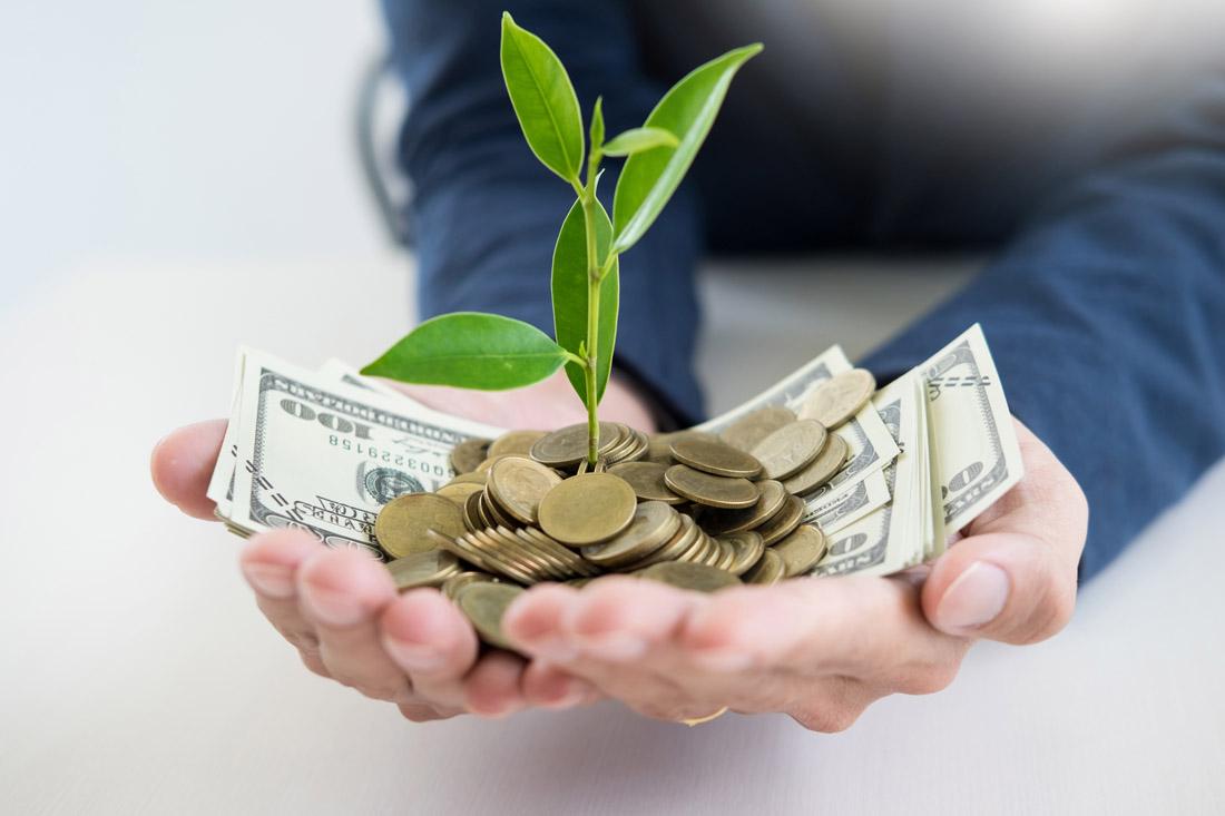 商务男人手中的美元和幼苗